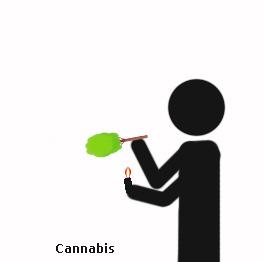 arboles drogas 7