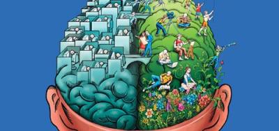cerebro-3