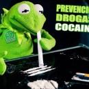 """Curs: """"L'abordatge preventiu del consum de cocaïna"""""""