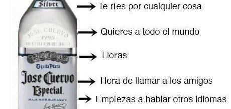 etapasalcohol