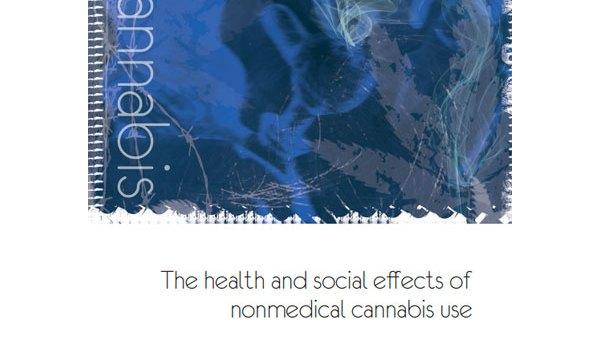 Informe OMS: Els efectes socials i de salut del consum de cànnabis no mèdic
