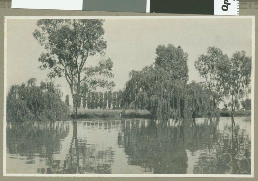 Murray River 1924 (www.slv.vic.gov.au)