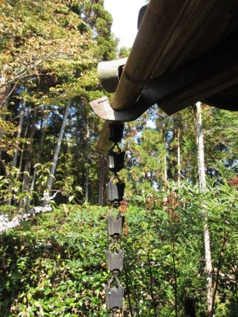 water chain on guttering of a Japanese building with forest background.