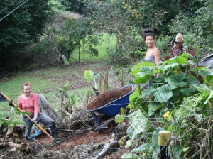 clearing lantana - women working hard