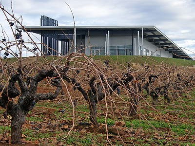 Black Trellis Wallpaper Grape Vines In The Forest Garden Plants Forum At Permies