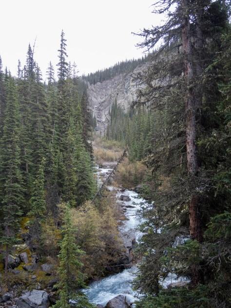 Approaching the headwall of Warren Creek