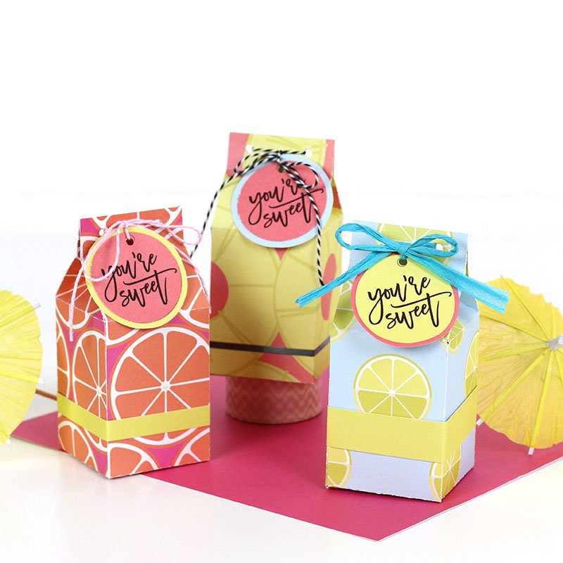 Free Printable Milk Carton Treat Box Template and Cut File - Persia Lou - Milk Carton Template