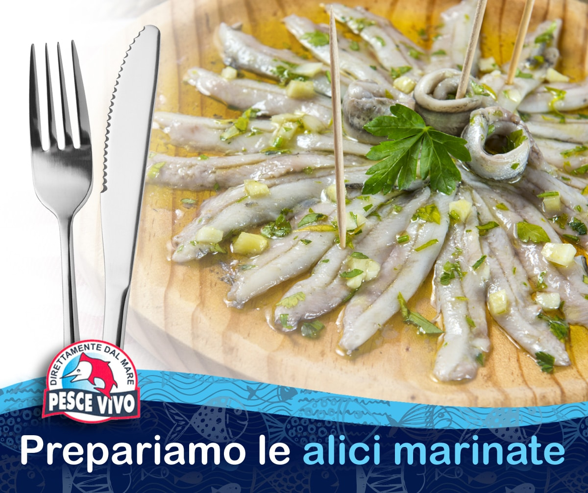 Come Cucinare Le Alici Marinate Preparazione Alici Marinate Pescheria Pesce Vivo