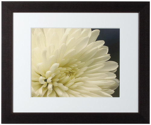 Digital Photo Printing: 10 Years After 10 woodframe framedest 500x415