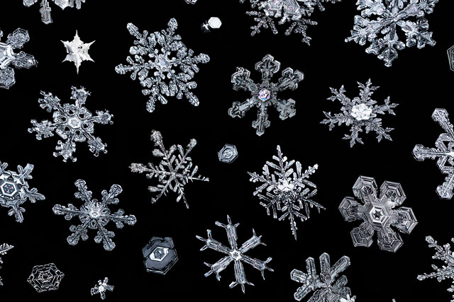 Real Snowflakes Falling Wallpaper This Snowflake Photo Took 2 500 Hours To Create
