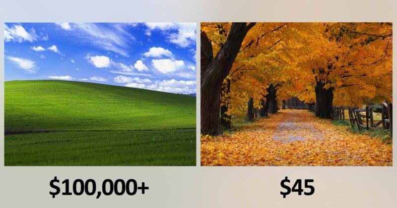 Microsoft Paid \u0027Bliss\u0027 Photog $100K+ and \u0027Autumn\u0027 Photog $45