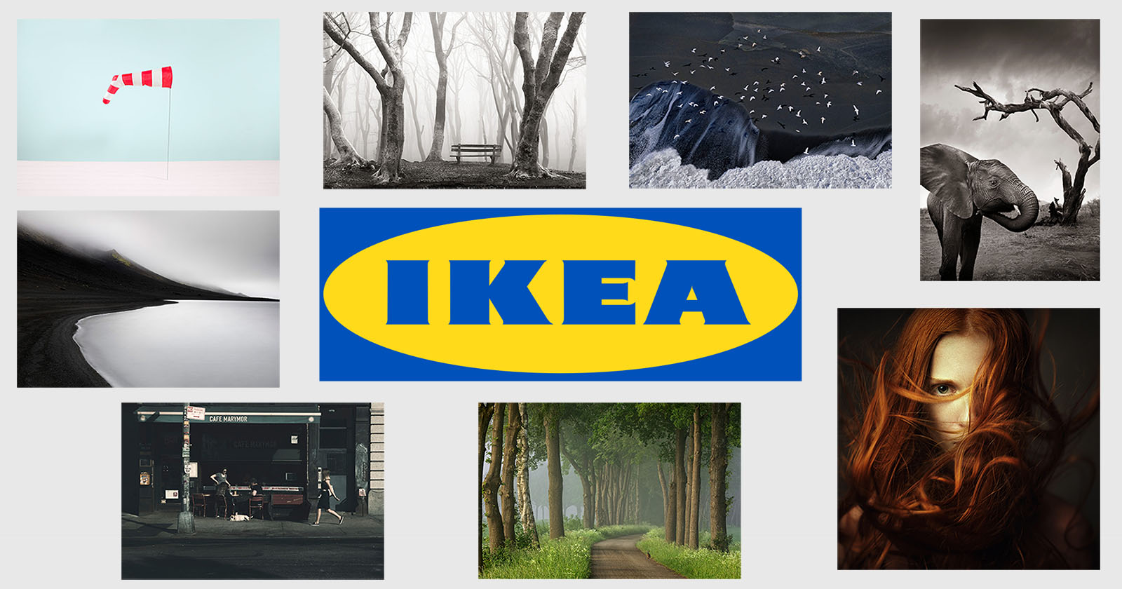 What Does Ikea Sell Ikea To Sell Hasselblad Masters Photos