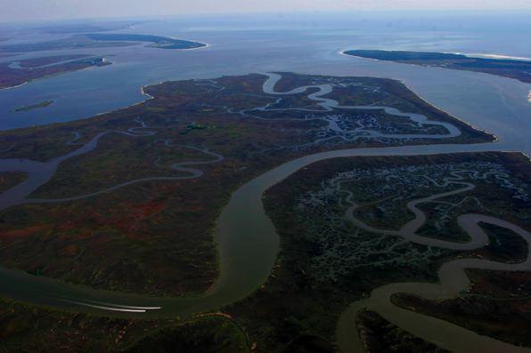 barrier islands of georgia