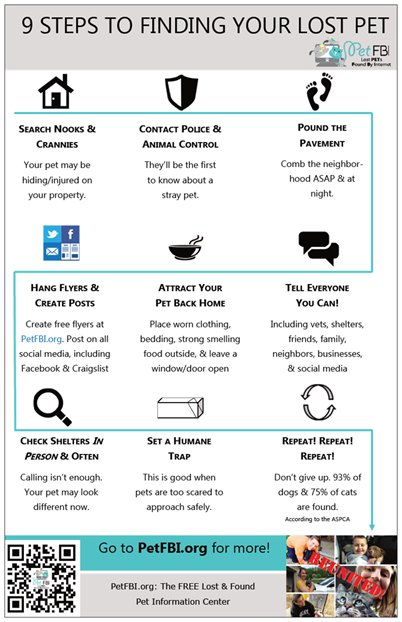 9 Steps To Finding a Lost Pet Infographic Pet FBI - lost pet flyer template free