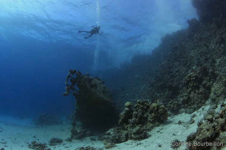 Épave. Plongée en Mer Rouge. Hamata, Égypte, novembre 2011.