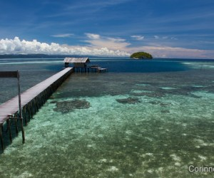 Le ponton du Sorido Bay Resort, côté mer et corail, à Kri. Raja Ampat, Papua Barat, Indonésie. Mars 2012.