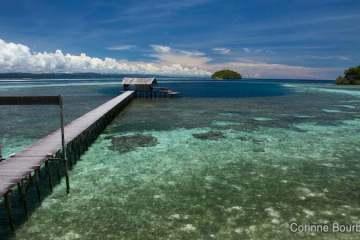 Sorido Bay Resort, Kri Island. Raja Ampat, Papua Barat, Indonésie. Mars 2012.