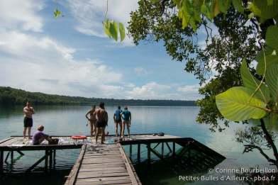 Le lac aux méduses de Kakaban. Bornéo, Indonésie. Juillet 2013.