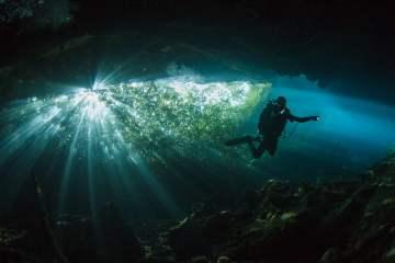 Cenote Ponderosa ou Jardín del Edén. Magnifiques jeux de lumière aquatiques, entre le végétal et le minéral. Mexique, juillet 2014.