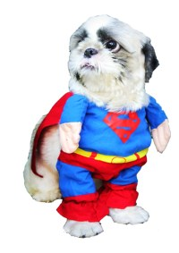 dog costume philippines | PetLovers Closet