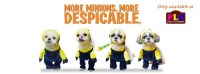 Pet Costumes: Wave4- Despicable Minions | PetLovers Closet