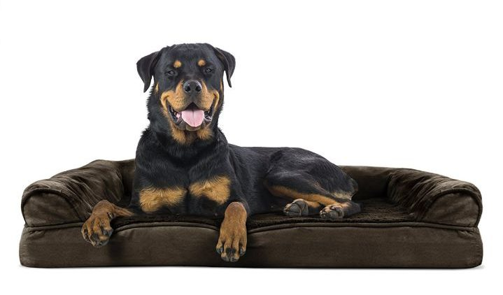 10 Best Dog Bed Reviews of 2019 - Top-Rated  Buyers Guide - Pet