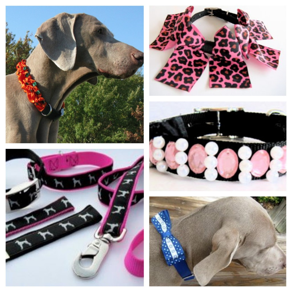 Cool Cat Supplies The 10 Coolest Dog Accessories You Should Have Pet Paw