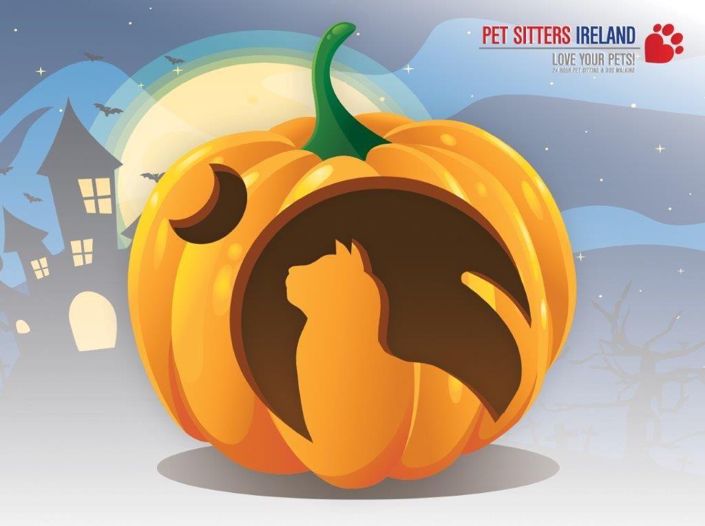 Easy Pumpkin Carving Stencils Free Download  Video Tutorial - cat pumpkin template