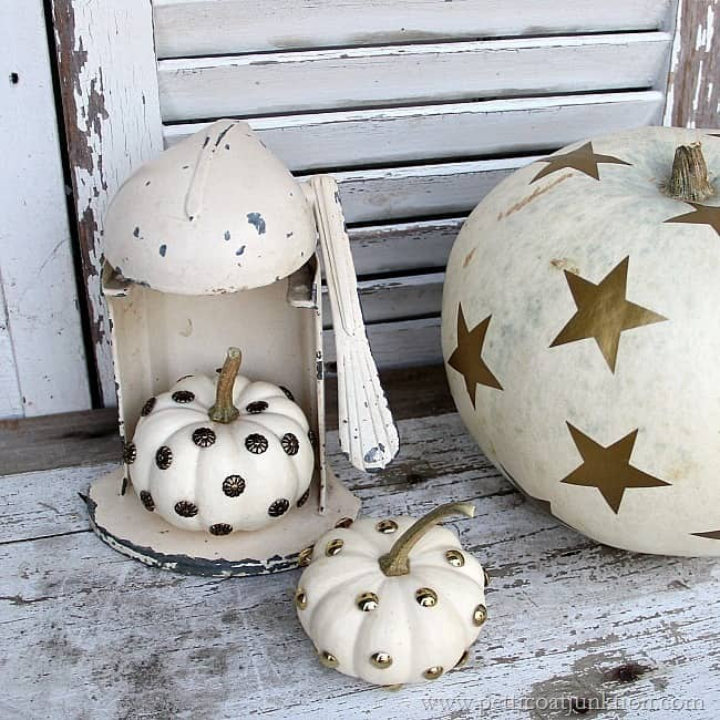 Fall Pumpkin Patch Wallpaper Decorating White Pumpkins For Holiday And Fall Displays