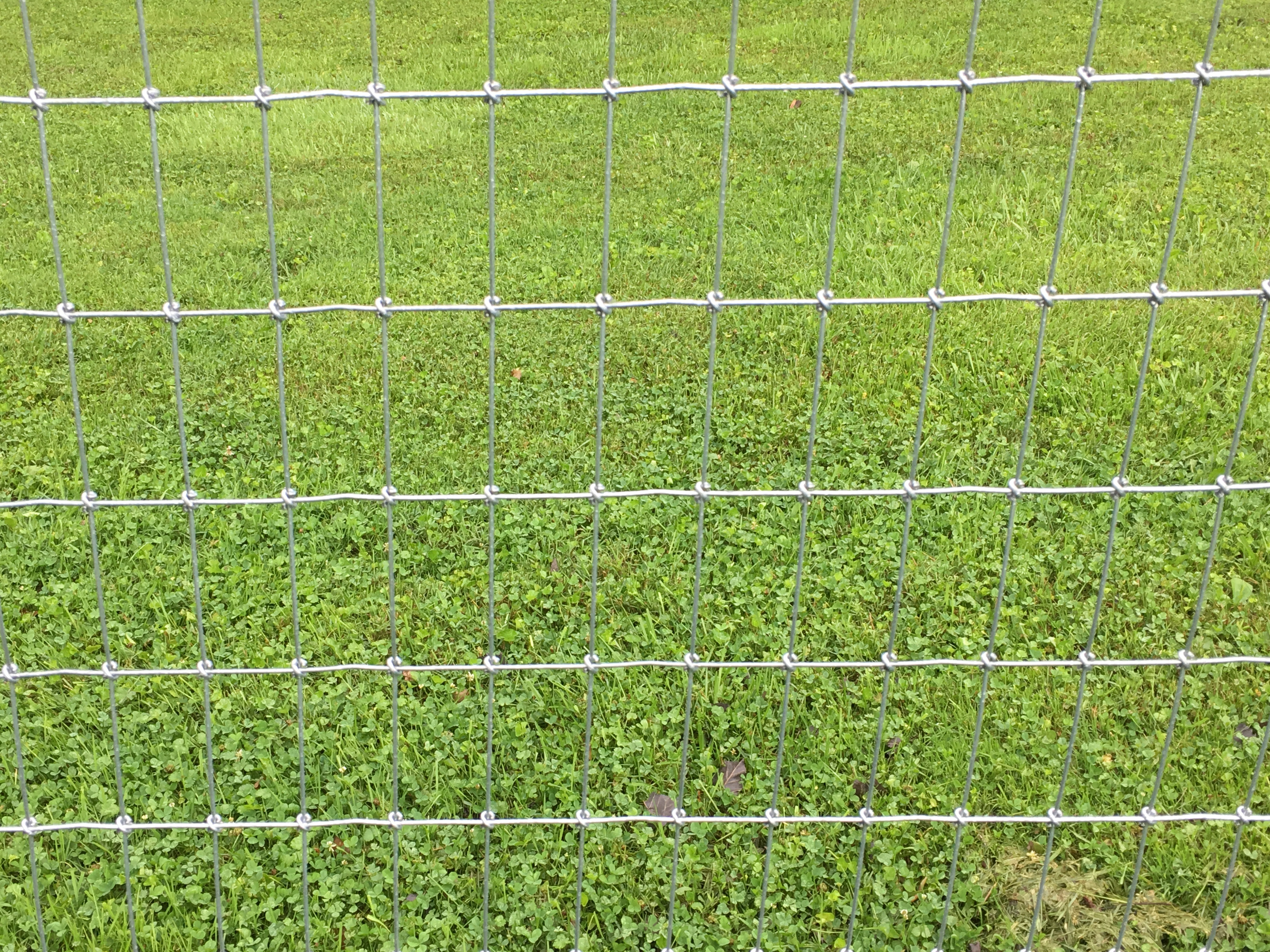 Wire Fencing Woven Wire Fence Petty Farms