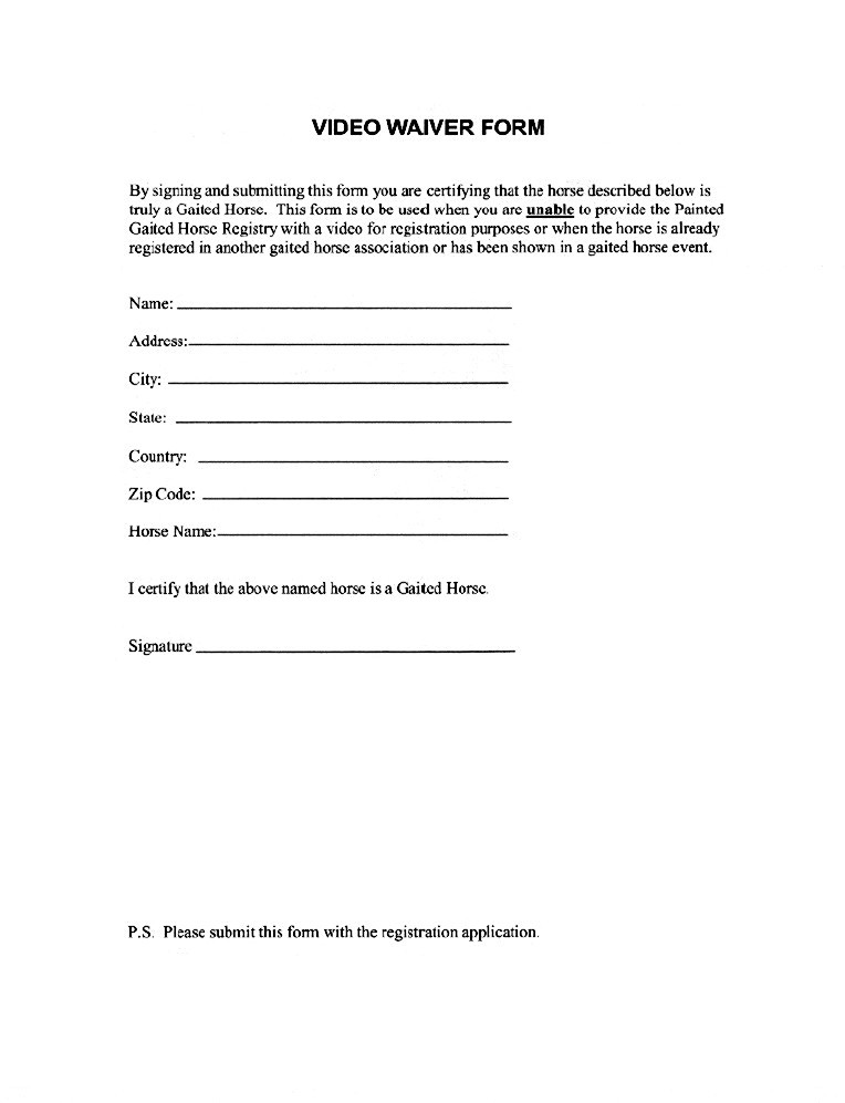 Video Release Form Sample Model Release Form Free Documents In Pdf - video release forms