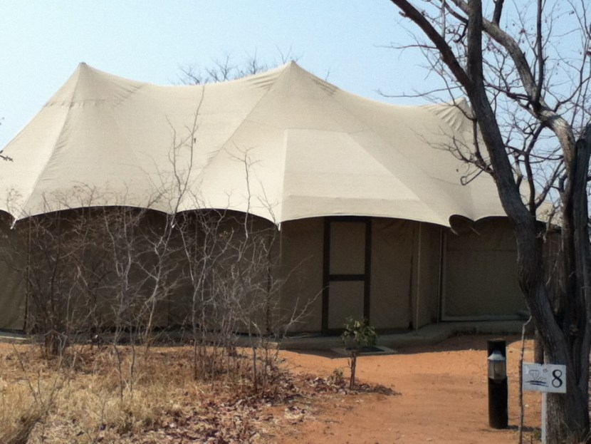Elephant Camp safari luxury tent Zimbabwe