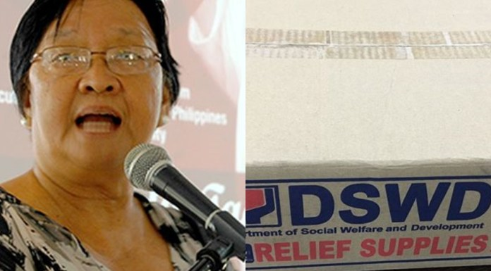 DSWD Chief introduces