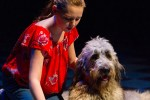 BECAUSE OF WINN-DIXIE (DTC): A child and her dog steal a charming musical