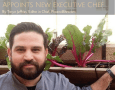 The Westin Phoenix Downtown Appoints New Executive Chef