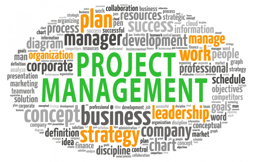 PMP® vs Project+ for Project Management TechRoots Blog