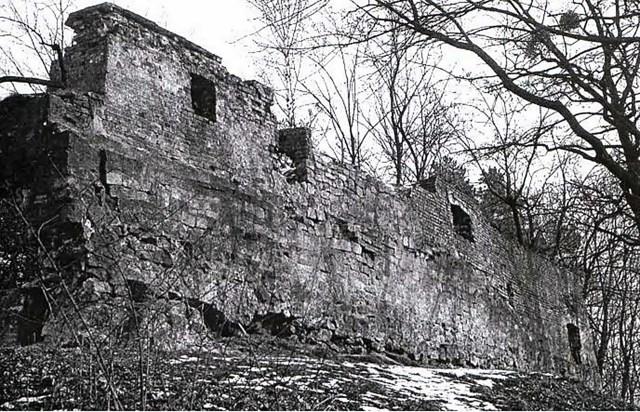 Залишки Високого замку (wikipedia.org)
