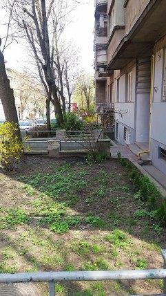 Львів, вул. Дорошенка 49. Невелика клумба перед фасадом будинку.