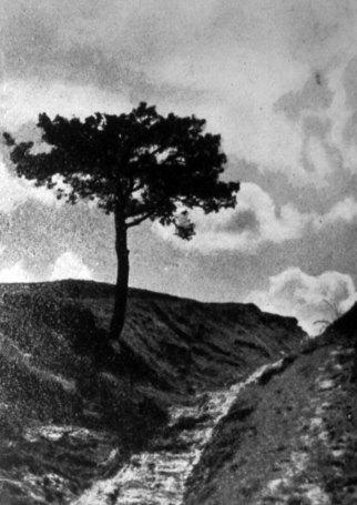 Ярослав і Роман Масляки. Знимки до статті «Хмари», сер. 1930-х рр. (Світло й Тінь. – 1936. – Ч. 8)