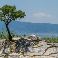 Cu gândul la Balcaniadă