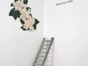 AbsolutelyFree-STalbumcover