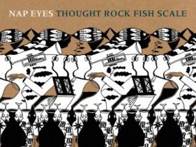 NapEyes-ThoughtRockFishScale