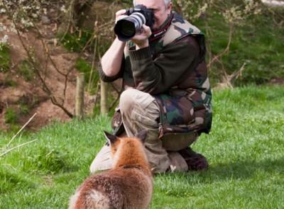 Wildlife Photography: Wildlife Photographer Jobs In India