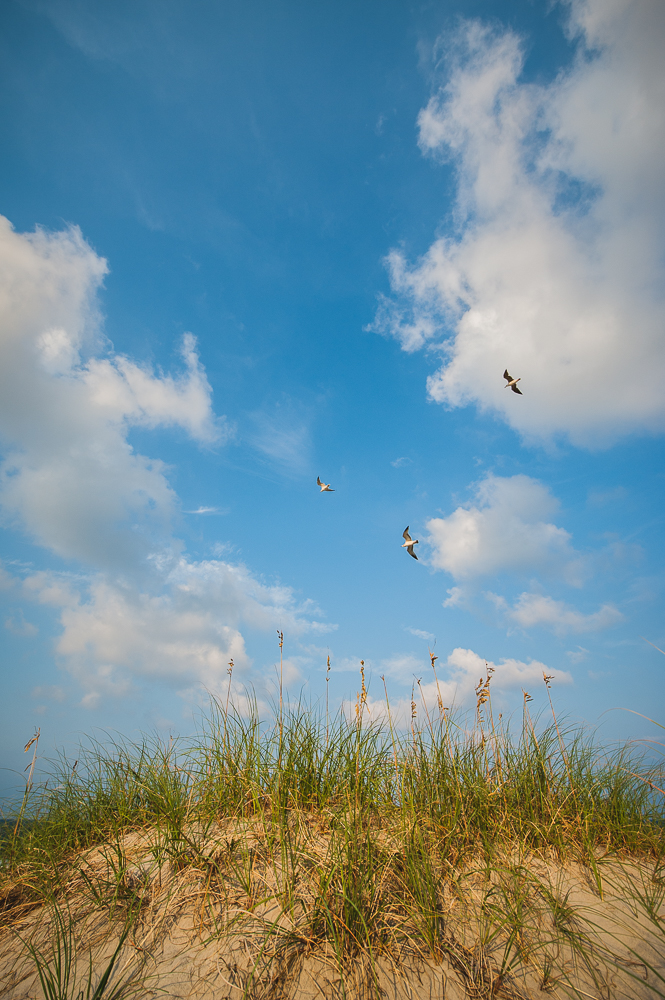 Outer_Banks_0030_150904