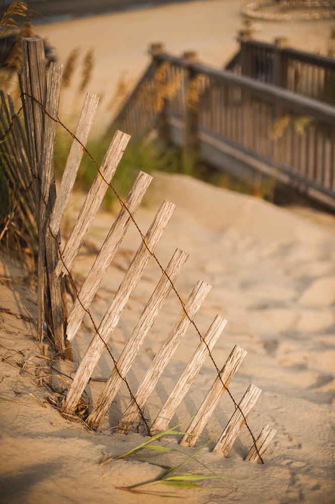 Outer_Banks_0032_150904