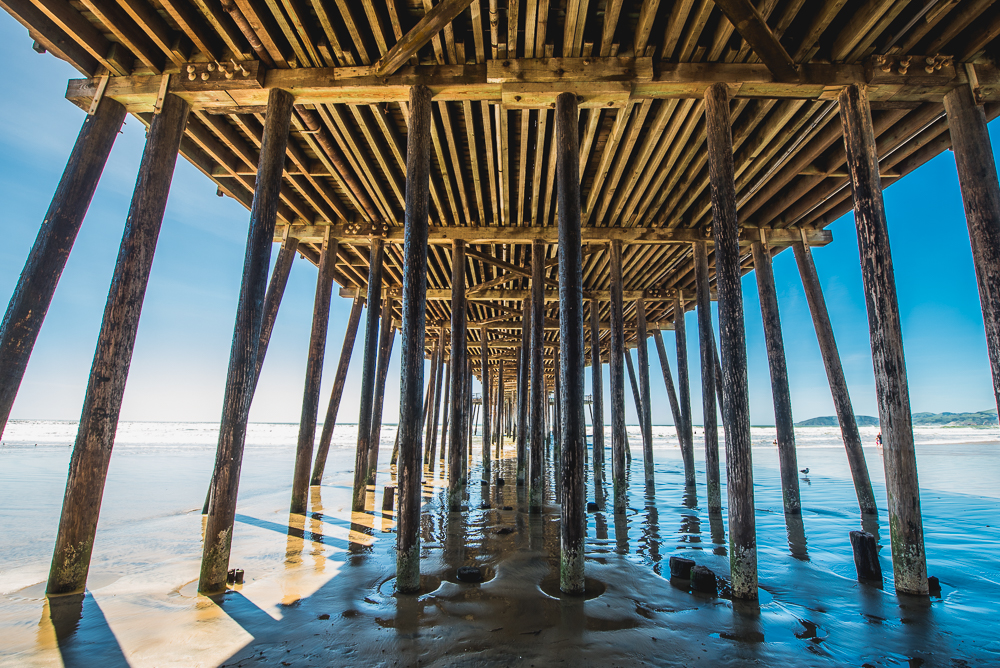 PCH_Day_2_0011_160315