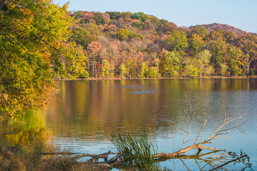 radnor_lake_with_belle_0007_161113