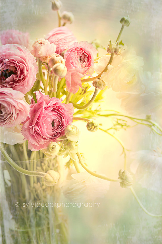 Shabby Chic Shop Pretty Flower Bouquets – Shabby Chic Photography By Sylvia