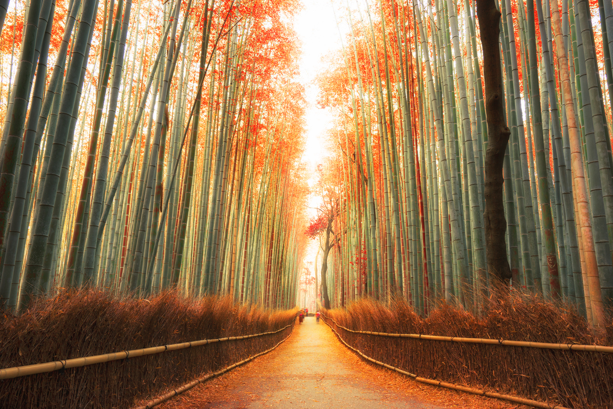 Welcome Fall Wallpaper 35 Beautiful Fall Photos And Time Lapse Video