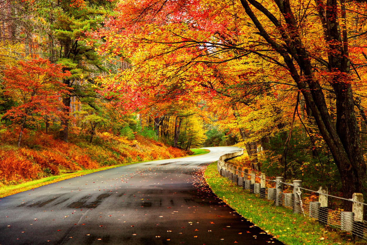 Vermont Fall Foliage Wallpaper 35 Beautiful Fall Photos And Time Lapse Video